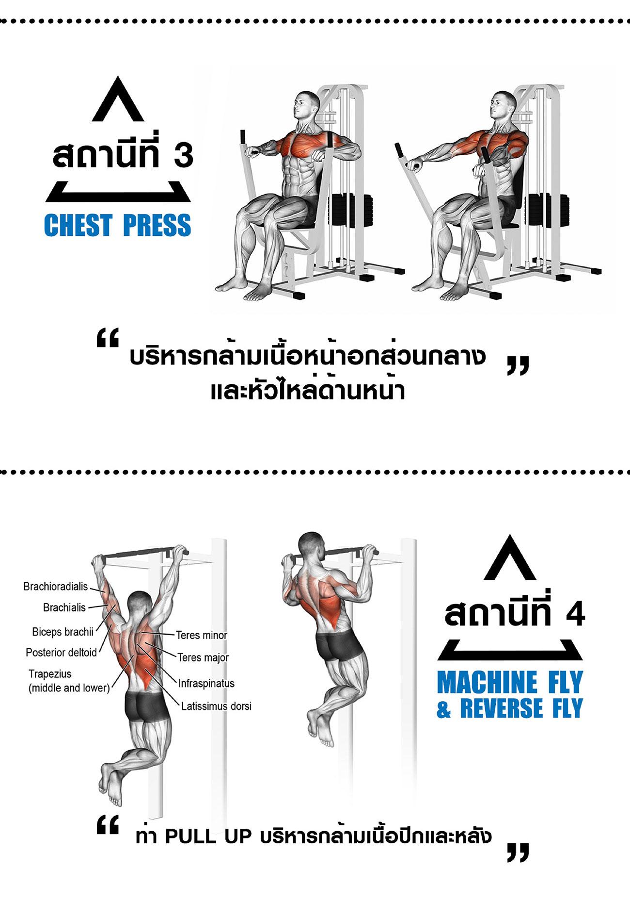360 Ongsa Fitness 4 Station Pectoral - Chest Press - Leg Press - Power Tower